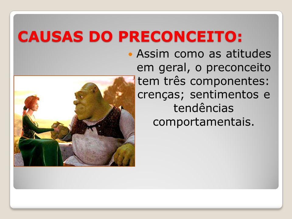 CAUSAS DO PRECONCEITO: Assim como as atitudes em geral, o preconceito tem três componentes: crenças; sentimentos e tendências comportamentais.