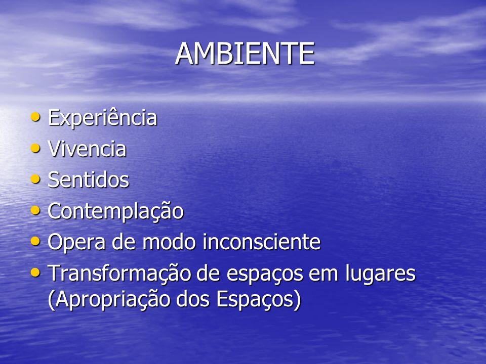 AMBIENTE Experiência Experiência Vivencia Vivencia Sentidos Sentidos Contemplação Contemplação Opera de modo inconsciente Opera de modo inconsciente T