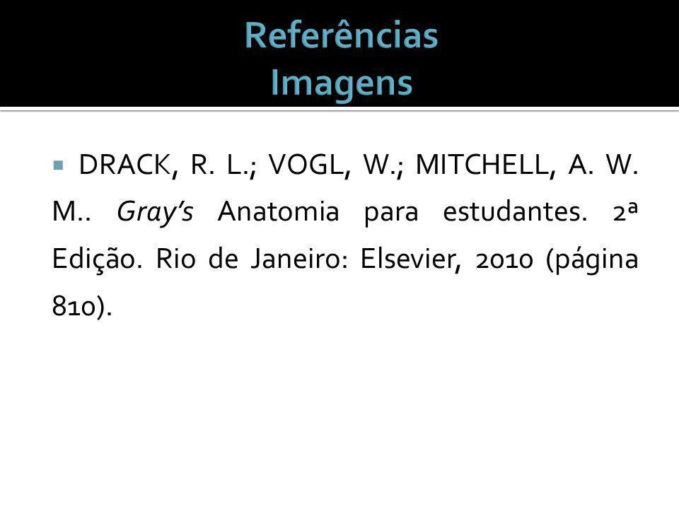 DRACK, R.L.; VOGL, W.; MITCHELL, A. W. M.. Grays Anatomia para estudantes.