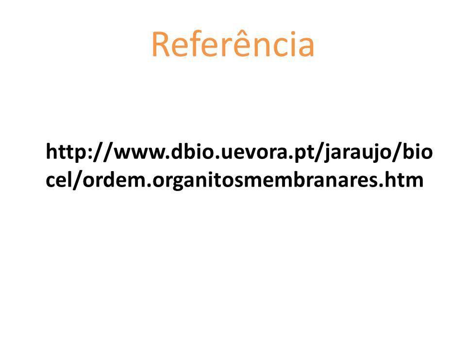 Referência http://www.dbio.uevora.pt/jaraujo/bio cel/ordem.organitosmembranares.htm