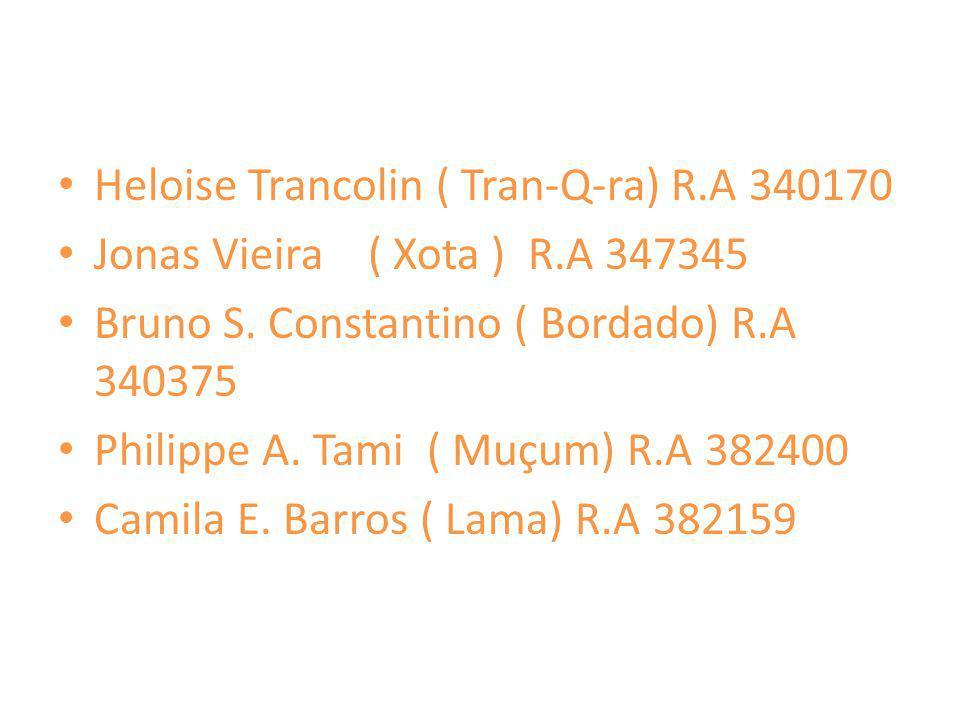 Heloise Trancolin ( Tran-Q-ra) R.A 340170 Jonas Vieira ( Xota ) R.A 347345 Bruno S. Constantino ( Bordado) R.A 340375 Philippe A. Tami ( Muçum) R.A 38