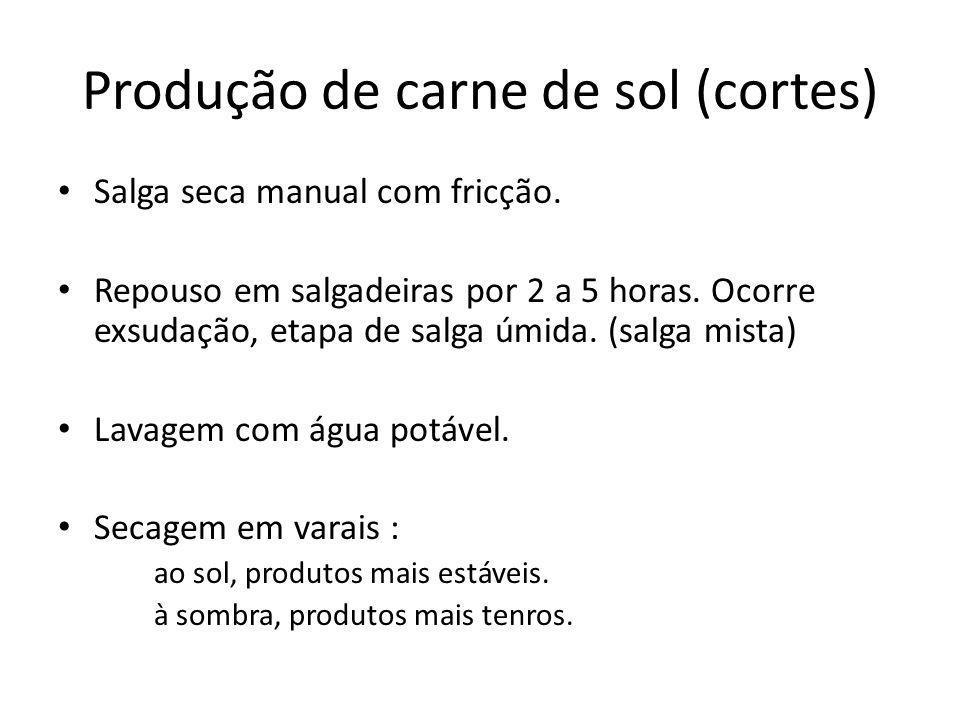 Produção de carne de sol (cortes) Salga seca manual com fricção. Repouso em salgadeiras por 2 a 5 horas. Ocorre exsudação, etapa de salga úmida. (salg