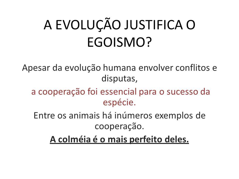A EVOLUÇÃO JUSTIFICA O EGOISMO? Apesar da evolução humana envolver conflitos e disputas, a cooperação foi essencial para o sucesso da espécie. Entre o