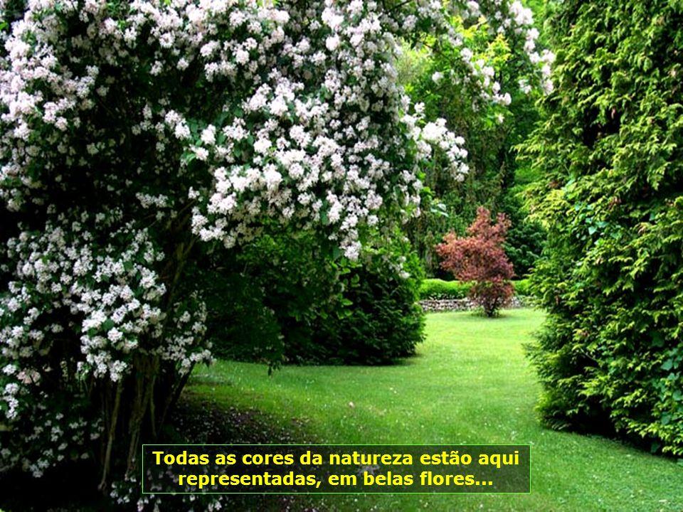 Pequenos lagos e riachos em meio às flores e árvores, com muitos pássaros, um verdadeiro recanto de paz e de tranqüilidade...
