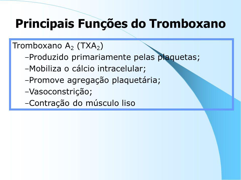Principais Funções do Tromboxano Tromboxano A 2 (TXA 2 ) – Produzido primariamente pelas plaquetas; – Mobiliza o cálcio intracelular; – Promove agregação plaquetária; – Vasoconstrição; – Contração do músculo liso