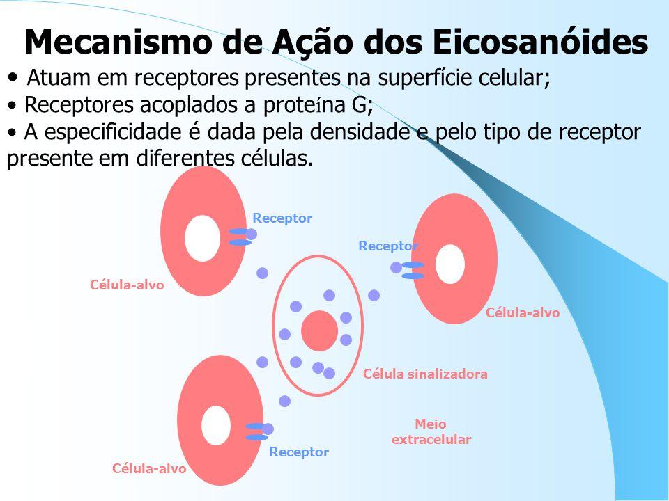 Meio extracelular Receptor Atuam em receptores presentes na superfície celular; Receptores acoplados a prote í na G; A especificidade é dada pela densidade e pelo tipo de receptor presente em diferentes células.