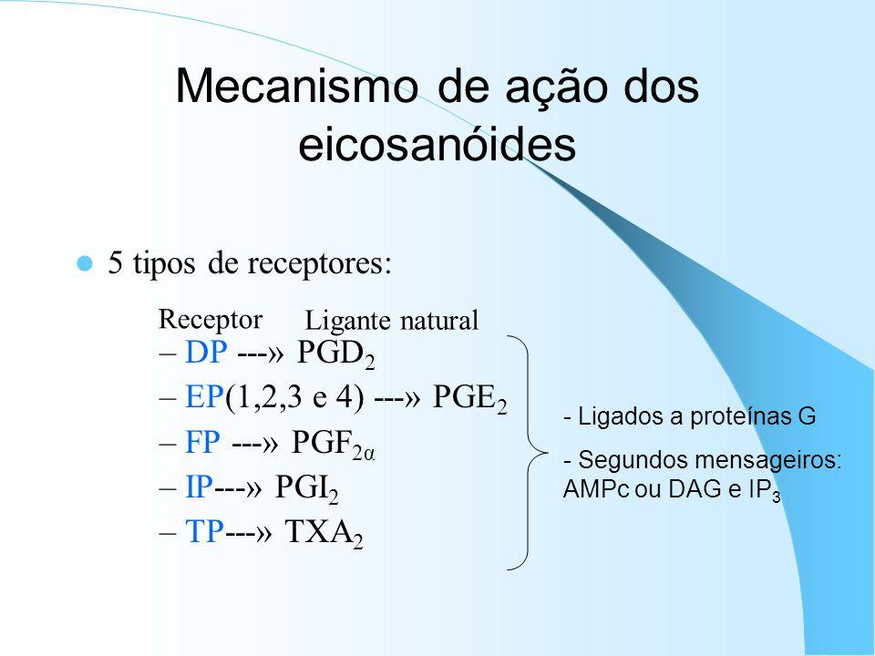 Mecanismo de ação dos eicosanóides 5 tipos de receptores: – DP ---» PGD 2 – EP(1,2,3 e 4) ---» PGE 2 – FP ---» PGF 2α – IP---» PGI 2 – TP---» TXA 2 - Ligados a proteínas G - Segundos mensageiros: AMPc ou DAG e IP 3 Receptor Ligante natural