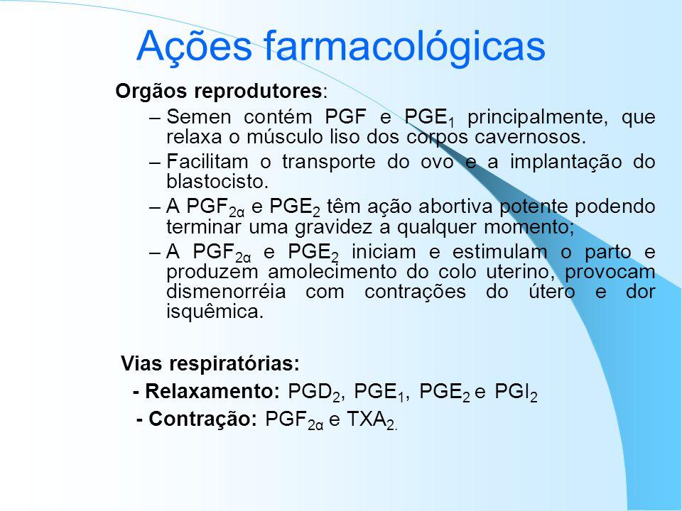 Ações farmacológicas Orgãos reprodutores: –Semen contém PGF e PGE 1 principalmente, que relaxa o músculo liso dos corpos cavernosos. –Facilitam o tran