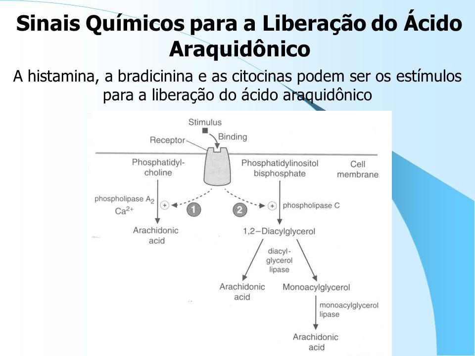 A histamina, a bradicinina e as citocinas podem ser os estímulos para a liberação do ácido araquidônico Sinais Químicos para a Liberação do Ácido Araquidônico
