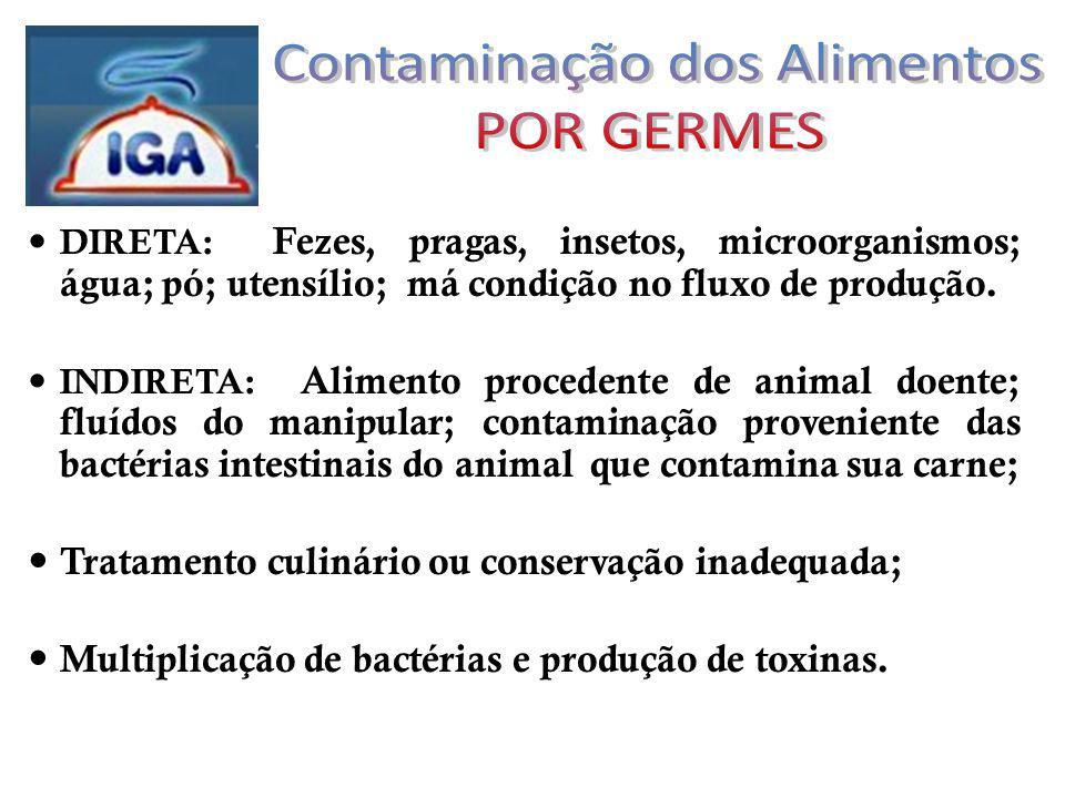 DIRETA: Fezes, pragas, insetos, microorganismos; água; pó; utensílio; má condição no fluxo de produção.