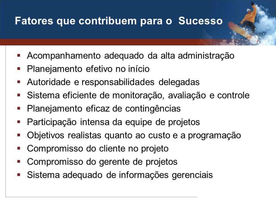 Fatores que contribuem para o Sucesso Acompanhamento adequado da alta administração Planejamento efetivo no início Autoridade e responsabilidades dele