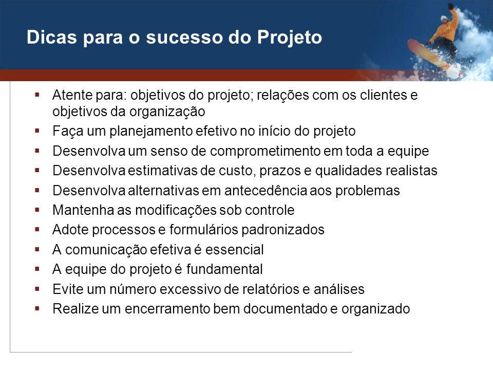 Dicas para o sucesso do Projeto Atente para: objetivos do projeto; relações com os clientes e objetivos da organização Faça um planejamento efetivo no