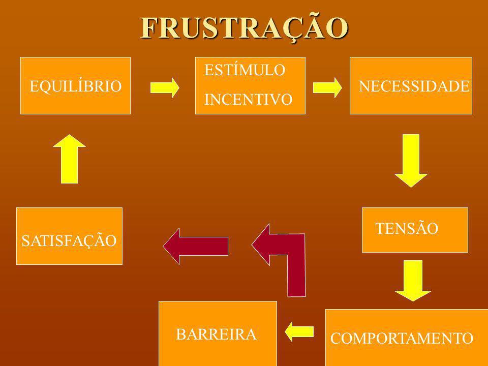 CICLO MOTIVACIONAL EQUILÍBRIO ESTÍMULO INCENTIVO NECESSIDADE TENSÃOCOMPORTAMENTO SATISFAÇÃO