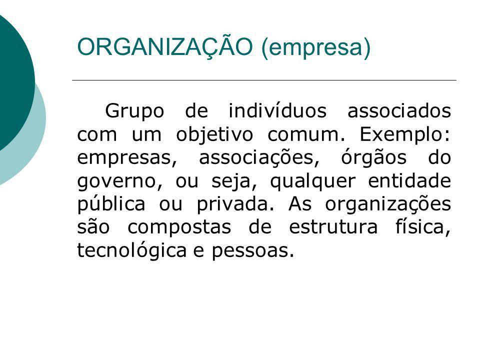 Grupo de indivíduos associados com um objetivo comum. Exemplo: empresas, associações, órgãos do governo, ou seja, qualquer entidade pública ou privada