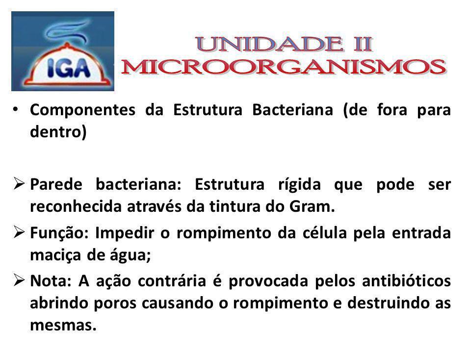 Classificação das Bactérias perante ao GRAM: Gram positivos; Gram negativos;