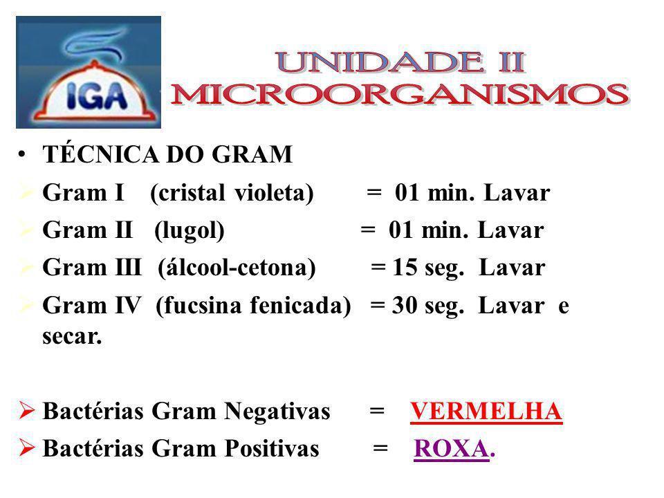 TÉCNICA DO GRAM Gram I (cristal violeta) = 01 min.