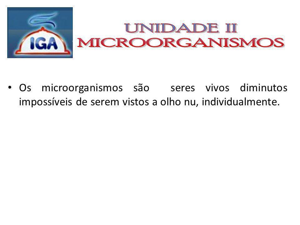 Principais microorganismos de interesse nos alimentos: Bactérias; Fungos; Leveduras (leveduras e fungos filamentosos); Vírus; Paramécios (Protozoários).