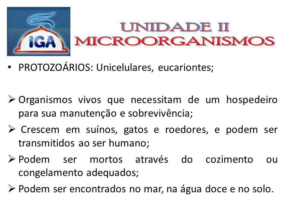 ALGAS: Em relação a contaminação alimentar, são em geral microscópicas e se encontram na água.