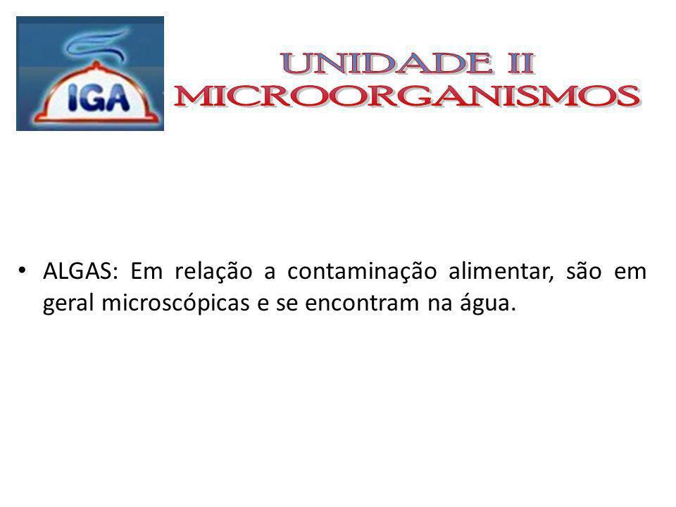 VÍRUS: São parasitas intracelulares obrigatórios, precisam da célula para replicar seu material genético; Os que infectam as bactérias são chamados de bacteriófagos.