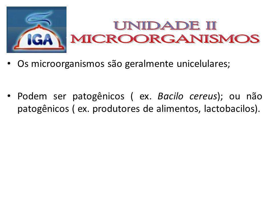 DIVISÕES DA MICROBIOLOGIA Bacteriologia - bactérias Micologia - fungos e leveduras; Ficologia - algas; Protozoologia - protozoários; Virologia - vírus.