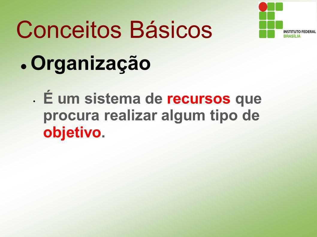 Conceitos Básicos Organização Objetivos: Toda organização existe com a finalidade de forncer alguma combinação de produtos e serviços para algum tipo de cliente.