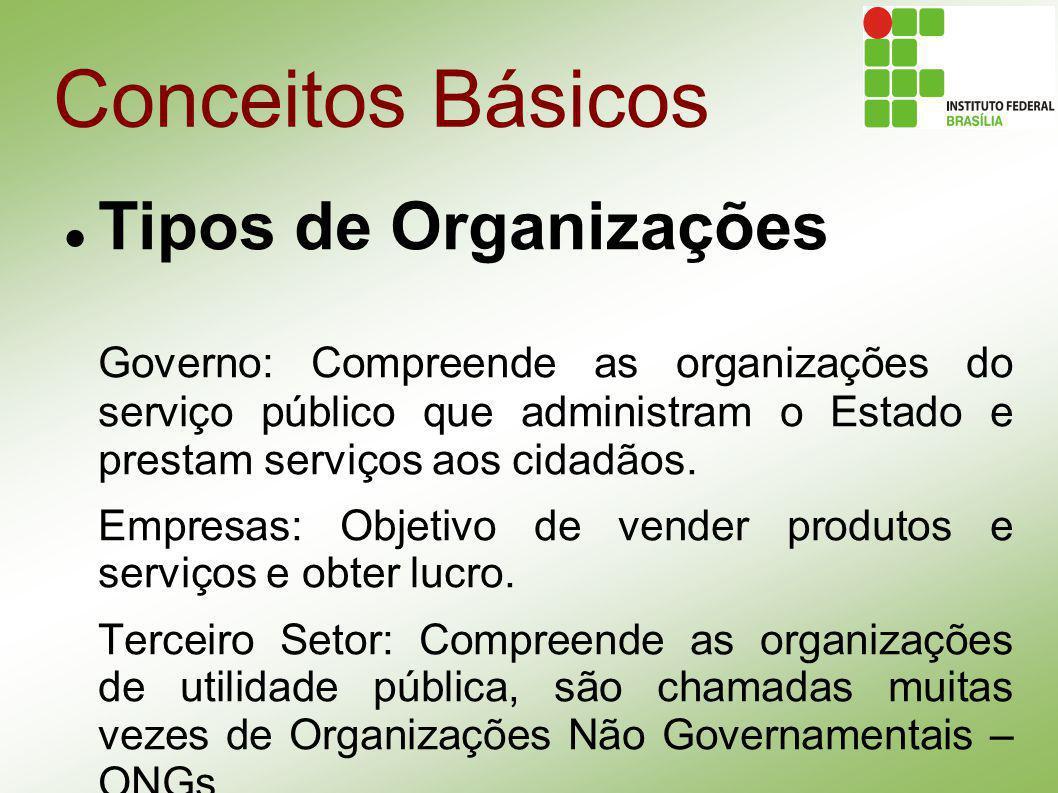 Conceitos Básicos Tipos de Organizações Governo: Compreende as organizações do serviço público que administram o Estado e prestam serviços aos cidadão