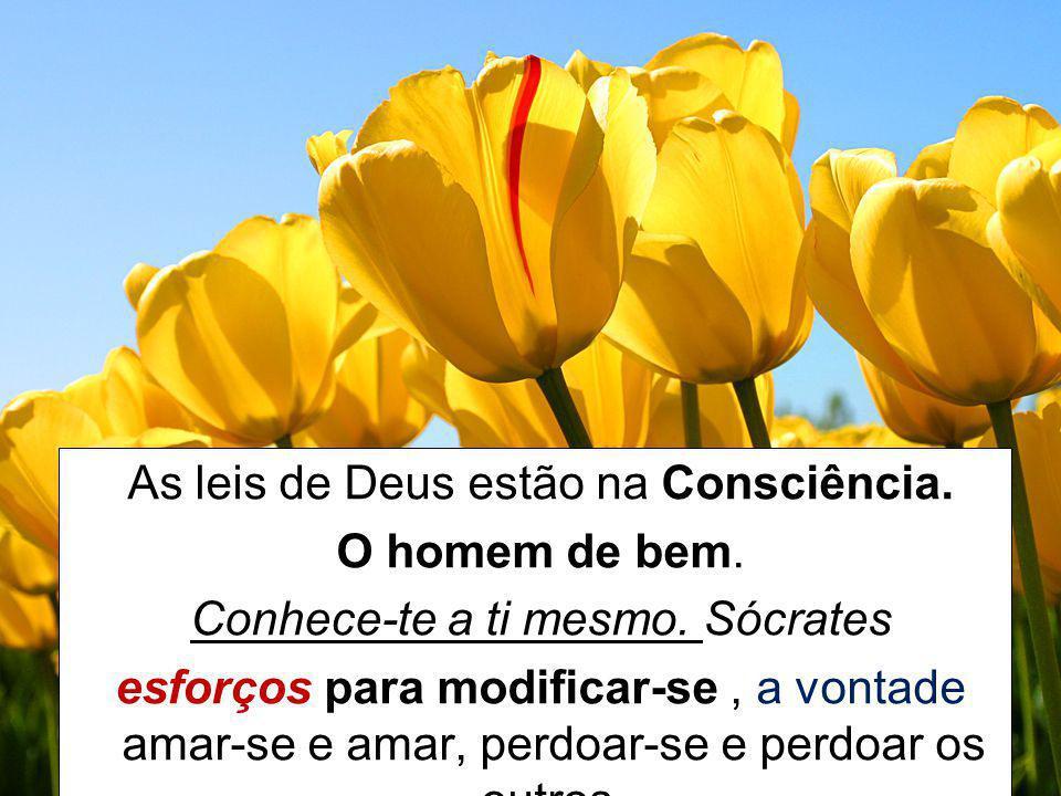 As leis de Deus estão na Consciência. O homem de bem. Conhece-te a ti mesmo. Sócrates esforços para modificar-se, a vontade amar-se e amar, perdoar-se