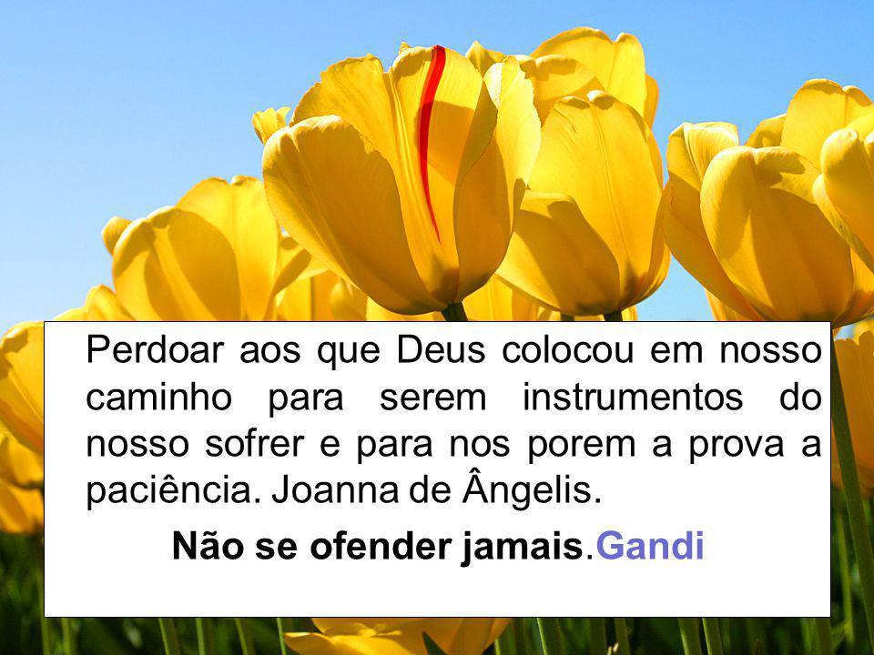 Perdoar aos que Deus colocou em nosso caminho para serem instrumentos do nosso sofrer e para nos porem a prova a paciência. Joanna de Ângelis. Não se