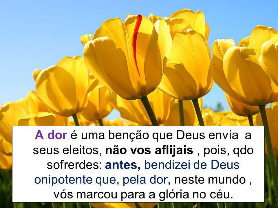 A dor é uma benção que Deus envia a seus eleitos, não vos aflijais, pois, qdo sofrerdes: antes, bendizei de Deus onipotente que, pela dor, neste mundo