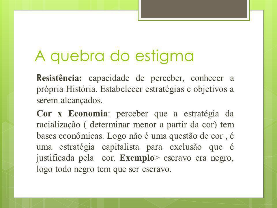 Dados/Racialização Os dados divulgados anualmente pelo Instituto Brasileiro de Geografia e Estatística (IBGE), por meio das Pesquisas Nacionais por Amostra de Domicílios (PNAD), ou pelo Instituto de Pesquisa Econômica Aplicada (IPEA) demonstram como a sociedade brasileira é racializada, ou melhor, como o termo raça é utilizado na sociedade brasileira para depreciar os salários dos(as) trabalhadores(as) negros(as) em relação aos dos trabalhadores(as) brancos(as), entre outras desigualdades raciais.