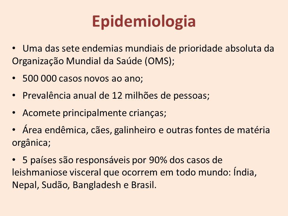 Epidemiologia Uma das sete endemias mundiais de prioridade absoluta da Organização Mundial da Saúde (OMS); 500 000 casos novos ao ano; Prevalência anu