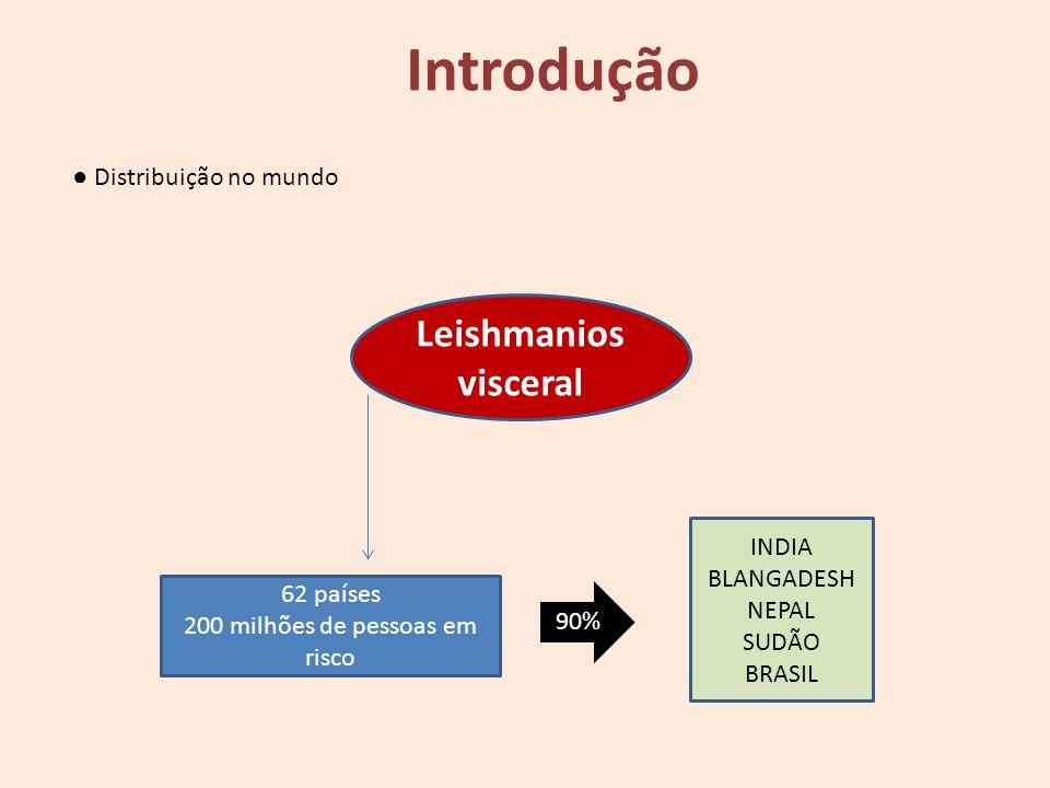 Leishmanios visceral 62 países 200 milhões de pessoas em risco 90% INDIA BLANGADESH NEPAL SUDÃO BRASIL Introdução Distribuição no mundo