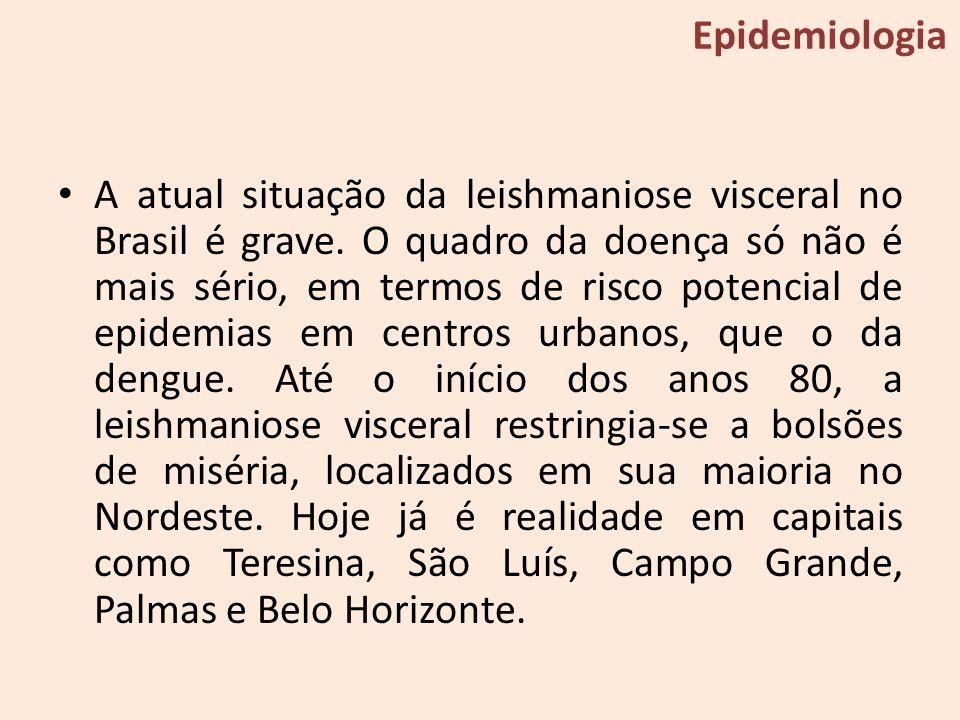 A atual situação da leishmaniose visceral no Brasil é grave. O quadro da doença só não é mais sério, em termos de risco potencial de epidemias em cent
