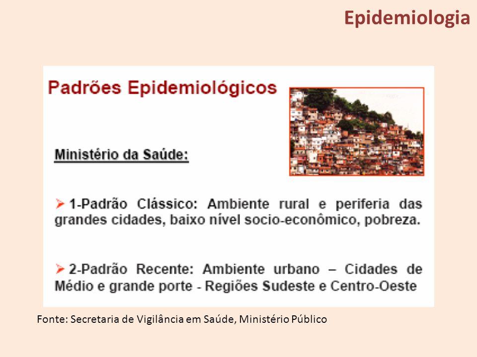 Fonte: Secretaria de Vigilância em Saúde, Ministério Público Epidemiologia