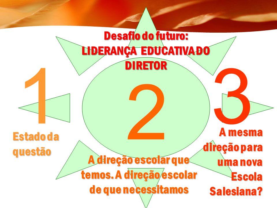 3 [3.2.] A função Direção compartilhada - liderança distribuída Criar uma fronteira na qual outros líderes, que tenham a mesma visão da escola, possam tomar decisões efetivas por eles mesmos.