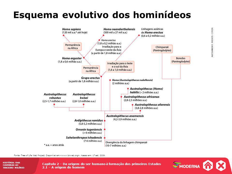 Capítulo 2 – Da origem do ser humano à formação dos primeiros Estados 2.1 – A origem do homem HISTÓRIA: DAS CAVERNAS AO TERCEIRO MILÊNIO Os nossos ancestrais HominídeoCaracterísticas Australopithecus Teria surgido em torno de 4 milhões de anos atrás no sul da África, tendo depois se subdividido em várias subespécies.
