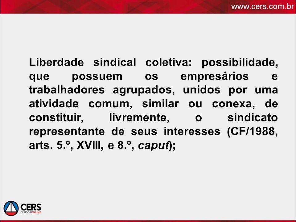 Liberdade sindical coletiva: possibilidade, que possuem os empresários e trabalhadores agrupados, unidos por uma atividade comum, similar ou conexa, d