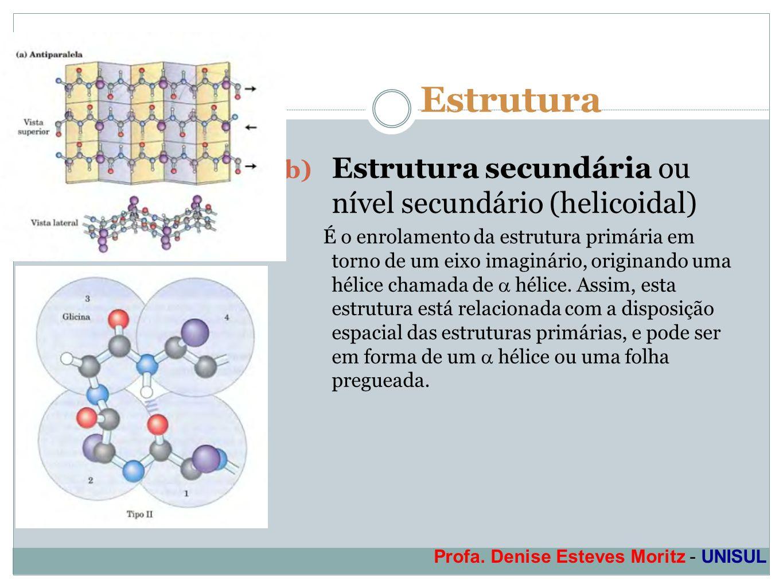 Profa. Denise Esteves Moritz - UNISUL Estrutura b) Estrutura secundária ou nível secundário (helicoidal) É o enrolamento da estrutura primária em torn