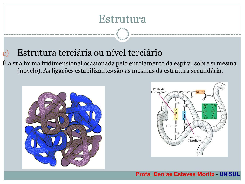 Profa. Denise Esteves Moritz - UNISUL Estrutura c) Estrutura terciária ou nível terciário É a sua forma tridimensional ocasionada pelo enrolamento da