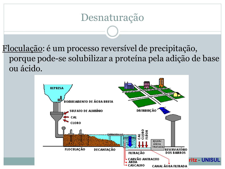 Profa. Denise Esteves Moritz - UNISUL Desnaturação Floculação: é um processo reversível de precipitação, porque pode-se solubilizar a proteína pela ad