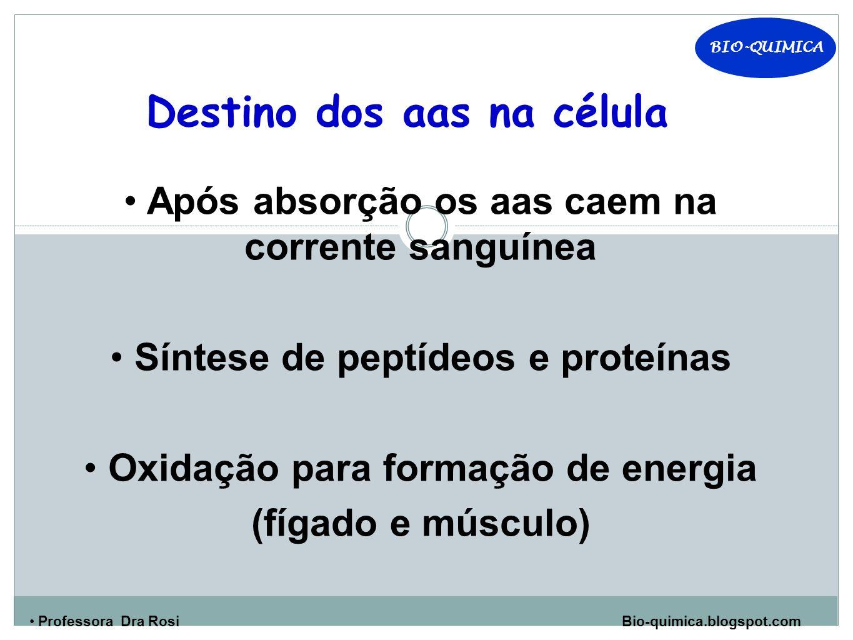 BIO-QUIMICA Professora Dra Rosi Bio-quimica.blogspot.com Destino dos aas na célula Após absorção os aas caem na corrente sanguínea Síntese de peptídeos e proteínas Oxidação para formação de energia (fígado e músculo)