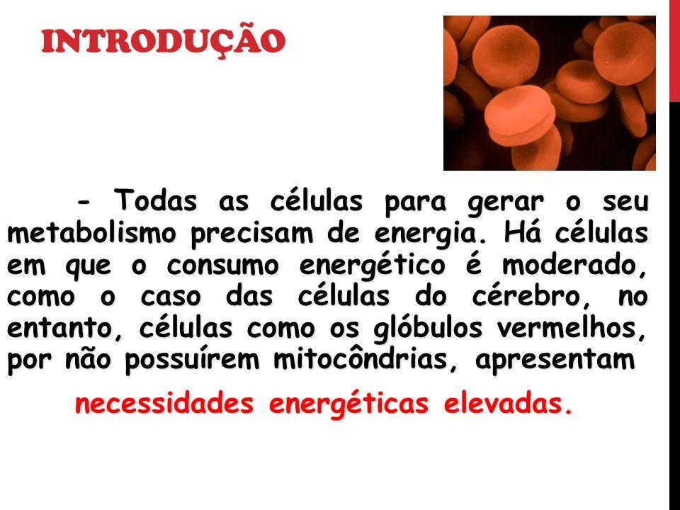 INTRODUÇÃO - Todas as células para gerar o seu metabolismo precisam de energia. Há células em que o consumo energético é moderado, como o caso das cél
