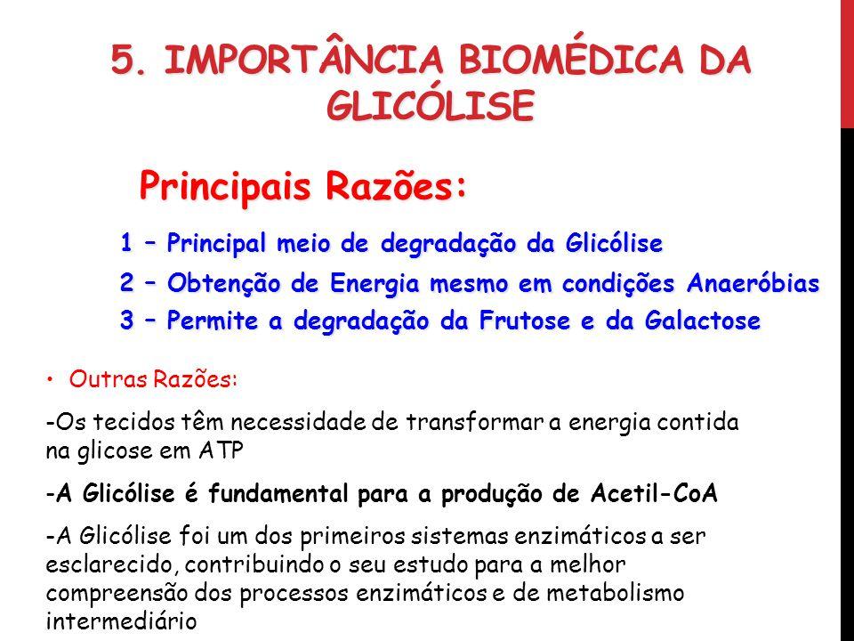5. IMPORTÂNCIA BIOMÉDICA DA GLICÓLISE 1 – Principal meio de degradação da Glicólise 2 – Obtenção de Energia mesmo em condições Anaeróbias 3 – Permite