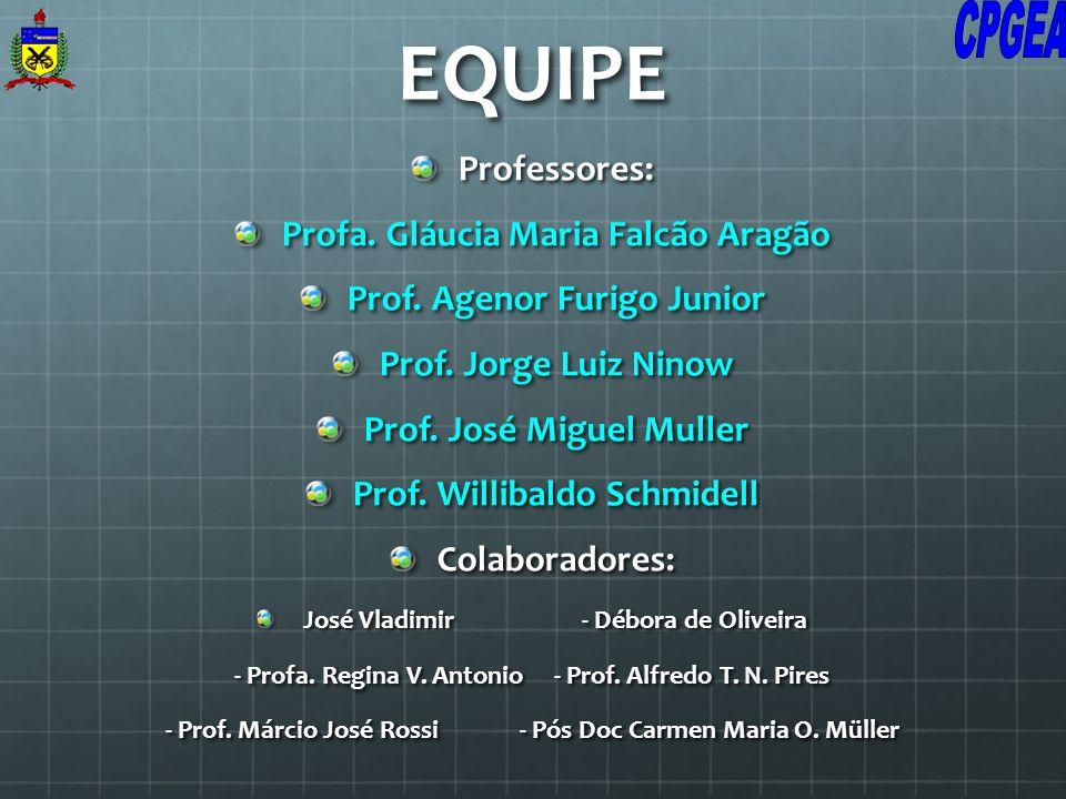EQUIPE Professores: Profa. Gláucia Maria Falcão Aragão Prof. Agenor Furigo Junior Prof. Jorge Luiz Ninow Prof. José Miguel Muller Prof. Willibaldo Sch