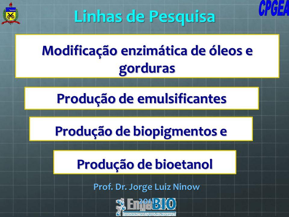 Modificação enzimática de óleos e gorduras Prof. Dr. Jorge Luiz Ninow 2011 Linhas de Pesquisa Produção de emulsificantes Produção de biopigmentos e Pr