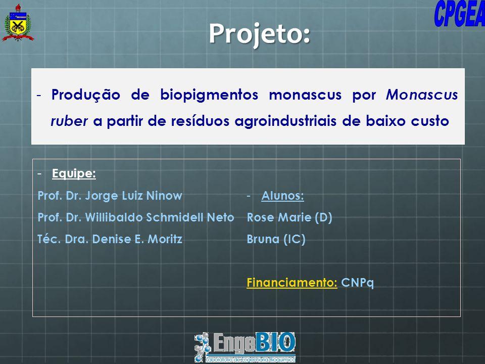 - Produção de biopigmentos monascus por Monascus ruber a partir de resíduos agroindustriais de baixo custo Projeto: - Equipe: Prof. Dr. Jorge Luiz Nin
