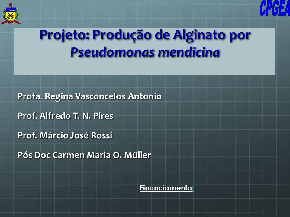 Projeto: Produção de Alginato por Pseudomonas mendicina Profa. Regina Vasconcelos Antonio Prof. Alfredo T. N. Pires Prof. Márcio José Rossi Pós Doc Ca
