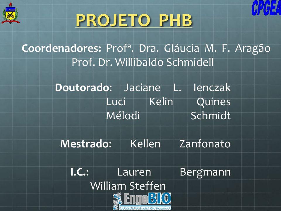 PROJETO PHB Coordenadores: Prof a. Dra. Gláucia M. F. Aragão Prof. Dr. Willibaldo Schmidell Doutorado: Jaciane L. Ienczak Luci Kelin Quines Mélodi Sch