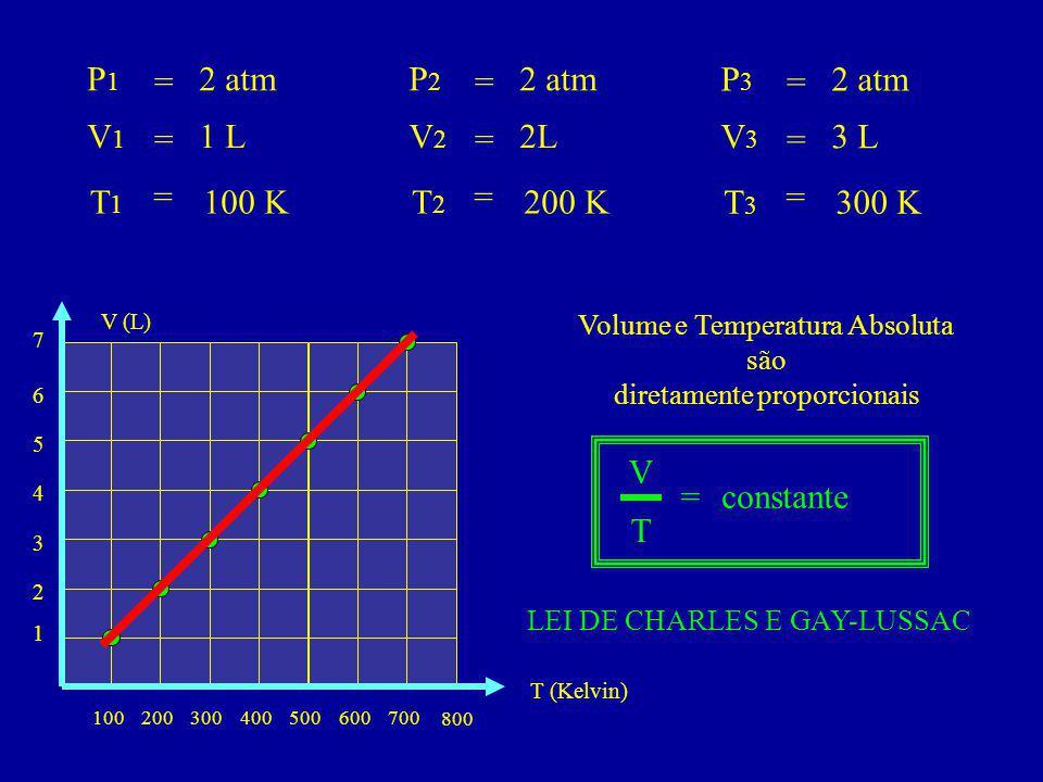 P1P1 V1V1 T1T1 = = = 2 atm 1 L 100 K P2P2 V2V2 T2T2 = = = 2 atm 2L 200 K P3P3 V3V3 T3T3 = = = 2 atm 3 L 300 K 100200300400 800 500700600 1 2 3 4 T (Kelvin) 5 7 6 V (L) Volume e Temperatura Absoluta são diretamente proporcionais LEI DE CHARLES E GAY-LUSSAC V T =constante