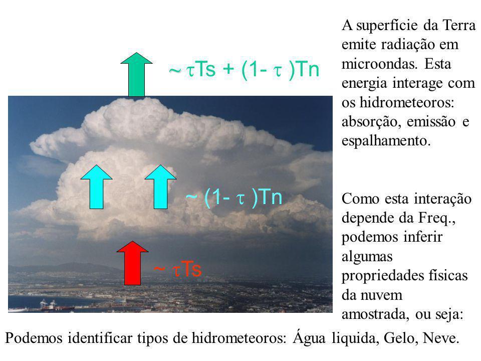 Modelo de Nuvens Nesta faixa do espectro, a radiação eletromagnética tem a contribuição da superfície (terra ou oceano), e a interação com o meio através da absorção, emissão e espalhamento dos diferentes hidrometeoros suspensos na atmosfera bem como dos gases (H2O, O2) Portanto um melhor detalhamento da precipitação da superfície seria feito a partir do conhecimento prévio do estado da atmosfera, ou seja, estrutura vertical da temperatura e umidade relativa, bem como da distribuição do conteúdo de água de nuvem e liquida, de gelo e neve.